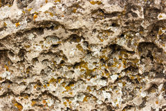 Stone textured background Royalty Free Stock Image