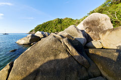 Stone in thailand kho tao bay abstract of   blue lagoon Stock Photos
