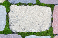Stone tile framed by green moss Royalty Free Stock Photography