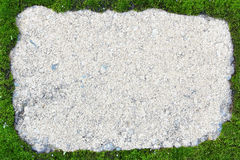 Stone tile framed by green moss Stock Photography