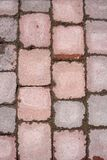 Stone tile paving. Pattern, with wet cement after the rain stock photos