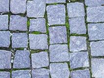 Stone tiles Stock Image