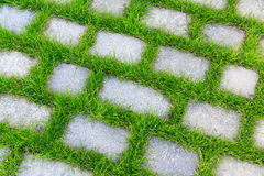 Stone tiles with grass in between Stock Images