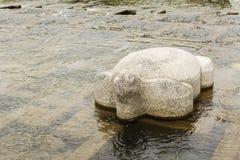 Stone tortoise in Kamogawa. Close-up the stone tortoise in Kamogawa in Kyoto Royalty Free Stock Image