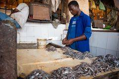 Fish Market in Stone Town, Zanzibar. STONE TOWN, ZANZIBAR - DEC 31, 2017: Sellers prepare fresh fish and seafood for sale at Darajani Market in Stone Town royalty free stock photo