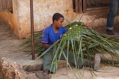 Man weaving basket out of grass reeds. royalty free stock photos