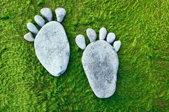 Stone Traces. Traces feet of a pebble stone on a green seaweed Royalty Free Stock Images