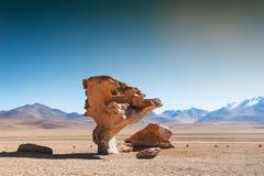 Stone tree in Altiplano, Bolivia. Stone tree Arbol de Piedra on the plateau Altiplano, Bolivia Stock Photography