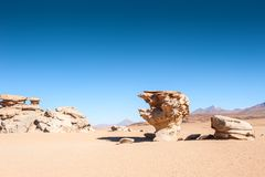 Stone tree Arbol de Piedra, Altiplano, Bolivia. Stone tree Arbol de Piedra on the plateau Altiplano, Bolivia Royalty Free Stock Photo