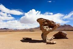 Stone tree, arbol de piedra, Bolivia. Stone tree, arbol de piedra in Uyuni, Bolivia Royalty Free Stock Photography