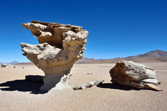 Stone tree. Arbol de Piedra (Stone tree) is an isolated rock formation in the Eduardo Avaroa Andean Fauna National Reserve of Sur Lipez Province, Bolivia, South Stock Image
