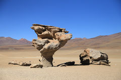 Stone Tree in Desert, Bolivia Royalty Free Stock Image