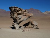 Stone tree. Famous stone tree in southern Bolivia Stock Photography