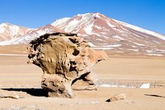 Stone Tree rock, Bolivia. Bolivian landmark. Arbol de Piedra Royalty Free Stock Images