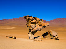 Stone tree rock formation. In desert landscape of Altiplano with blue sky, Bolivia Stock Photos