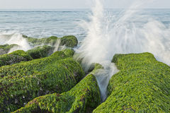 Stone Trench of Taiwan Laomei Coast Royalty Free Stock Image