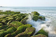 Stone Trench of Taiwan Laomei Coast Stock Image