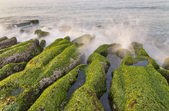 Stone Trench of Taiwan Laomei Coast Royalty Free Stock Photography