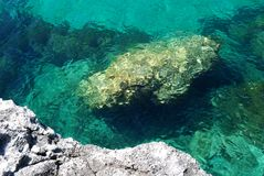 A stone under the sea Stock Photography