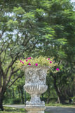 Stone vase in the old classical style with flowers in the park, Stock Images