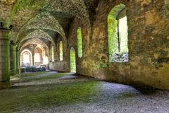 Stone vaults of a medieval building Stock Images