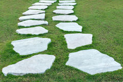 The stone walk path with green grass Stock Photography