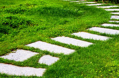 Stone walk path in meadow. Stone walk path is like a stepladder in meadow Stock Image