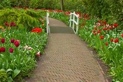 Stone walk way  in garden. Stone walk way winding in spring flower garden Keukenhof, Holland Stock Photography