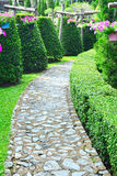 Stone walk way in the garden. Royalty Free Stock Image
