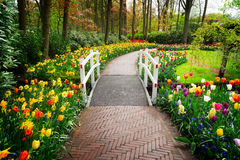 Stone walk way in garden Royalty Free Stock Images