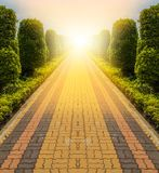Stone walk way. Long walk way of flower garden in park at sunshine Stock Photos