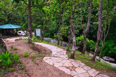Stone walk way to waterfall Stock Photography