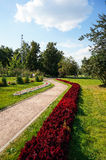 Stone walk way winding in a garden Stock Photography