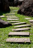 Stone walkway. In the garden Royalty Free Stock Images