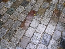 Stone Walkway Background Paris Royalty Free Stock Image