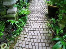 Stone walkway through english style garden along with green plan. Natural grey stone walkway through english style garden along with green plant and pots Royalty Free Stock Photo