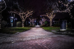 Stone Walkway with Festively Lit Trees. Dynamic and neat brick / stone path leading to a statue and lined with trees wrapped in festive lights stock image
