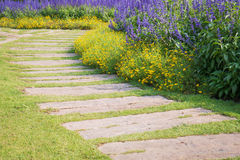 Stone walkway in flowers garden Stock Images