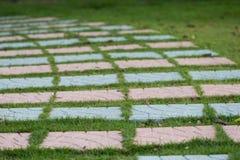 Stone walkway Stock Image