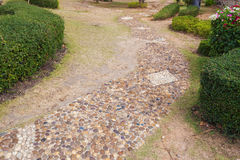 Stone walkway in garden Royalty Free Stock Images