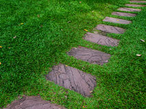 Stone walkway in the garden Royalty Free Stock Images