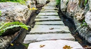 Stone Walkway in garden. Stock Photo