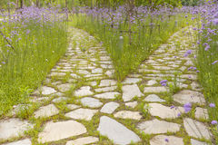 Stone walkway Royalty Free Stock Photos