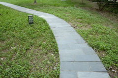Stone walkway on a grassy in the park Stock Photography