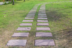 Stone walkway in green grass field backyard,select focus front a. Nd soft-focus background Stock Photography