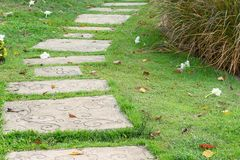 Stone walkway in green grass Stock Photography