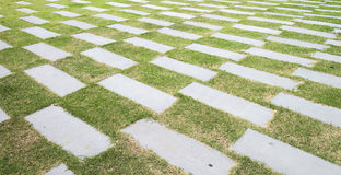 Stone walkway pattern on a grass field in garder Royalty Free Stock Image