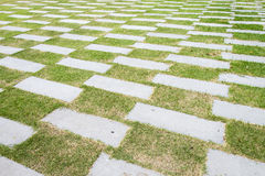 Stone walkway pattern on a grass field in perspective view Royalty Free Stock Photo