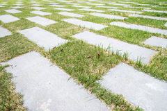Stone walkway pattern on a grass field in perspective view Royalty Free Stock Image