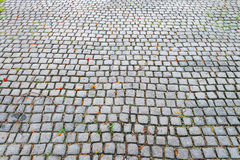 Stone walkway pattern on a grass field in perspective view in ga Royalty Free Stock Image